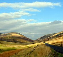 Road through the 'Granites'- near Peebles by rosie320d