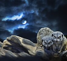 Midnight Watchers by ellenspaintings