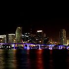 Miami's beauty by Christian Alexander