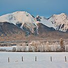 Hudson Bay Mountain 9129 by Curtis Cunningham