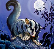 The Moonlighter; squirrel glider by Brian Tisdall