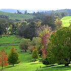 Autumn from Pear Tree Lookout - A Thamo by Golden Valley Tree Park