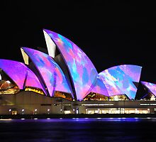 Sydney Opera House Incognito! by Tim Robinson
