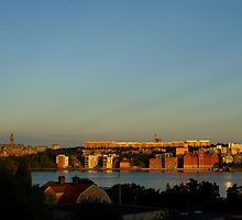 Midsummer in Stockholm by kostolany244