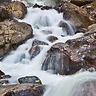 Twin Falls Detail by Curtis Cunningham