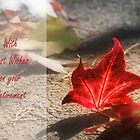 Autumn red by cards4U
