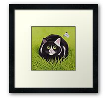 Cat and Cabbage White Framed Print