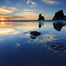 Wharariki Reflections by Michael Treloar