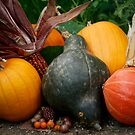 Fall Harvest II by Lynn Starner