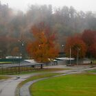Autumn Rain at the Park by Virginia Shutters
