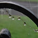 Tangled web by relayer51