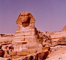 The sphinx  by machka