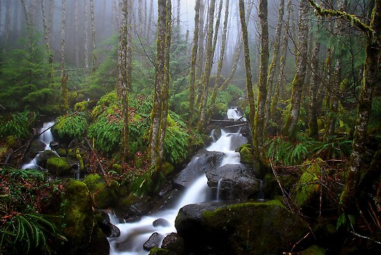 Just A Dream by Charles & Patricia   Harkins ~ Picture Oregon