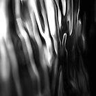 Liquid Light by Simon Pattinson
