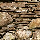 drystone (iphone case) by Louise Green