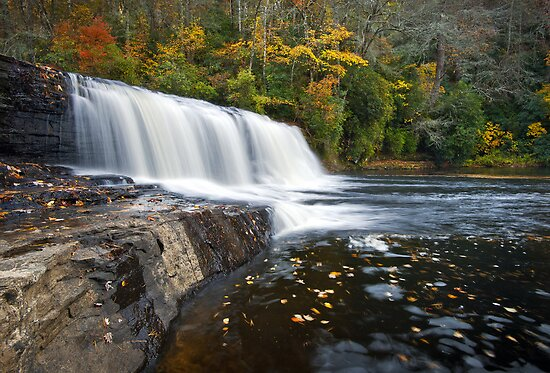 Hooker Falls in Autumn - Fall Foliage in Dupont State Forest by Dave Allen