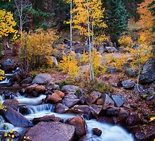 Healing Rivers Of Fall by John  De Bord Photography
