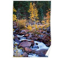 Healing Rivers Of Fall Poster