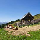 Halterhütte in the Alm. by Lee d'Entremont