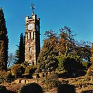 Tunstall Park: Clocktower by Aggpup