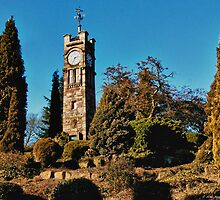 Tunstall Park: Clocktower by David J Knight