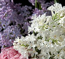 Spring Bouquet iPhone Case by Judi FitzPatrick