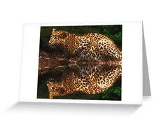 Sinback  Greeting Card