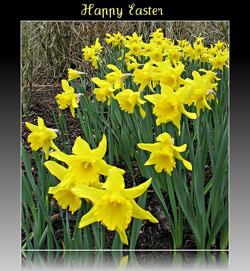 Easter Daffodils - Greeting Card by kathrynsgallery