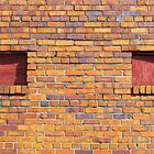 Colorful Bricks by Cynthia48