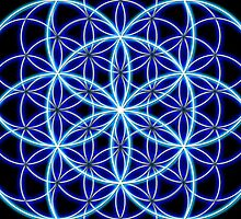 Flower of Life by Nolan Nitschke