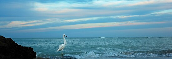 fishing at daybreak by kathy s gillentine