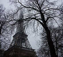 Eiffel Tower through the trees by Laura Fell