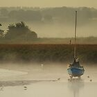 Exe Estuary by Neil Bygrave (NATURELENS)