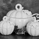 Pumpkins on the Table in Black and White by Sherry Hallemeier