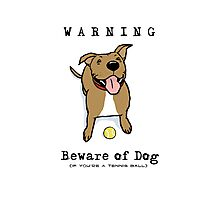 Beware of Dog Photographic Print