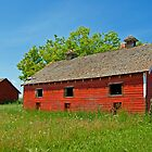 Just A Red Barn by Keri Harrish