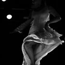 flamenco by Shlomi Kramer