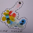 Life Cycle by leunig