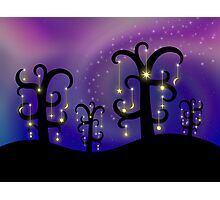 Orchard of Stars Photographic Print