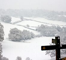 Snowy Fields, Petworth. by Emma Turner
