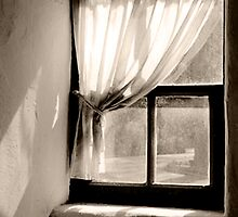 Window of Cpt Cook's cottage by ronsphotos