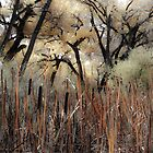 Cattails and Cottonwoods by Denice Breaux
