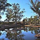 Kanyaka Waterhole - Flinders Ranges by Ian Berry