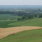 Rural Landscape 1 by Donald Salsbury