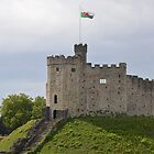 Cardiff Castle by suz01