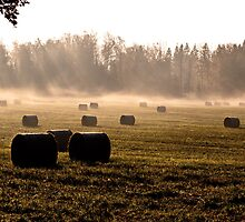 Bales by Mark Williams