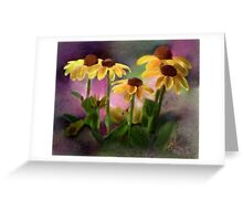Black-eyed Susan Flower Blossoms Greeting Card