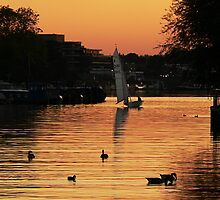 Kingston Sunset 8 by Will Goodwin