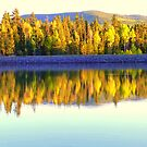 A1 Lake Fall Color Reflections by Eric  Neitzel