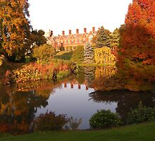 """Dear old Sandringham, the place I love better than anywhere in the world"" King George V by Sue Payne"